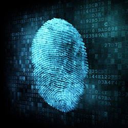 Computer Evidence Recovery » Using Computer Forensics |